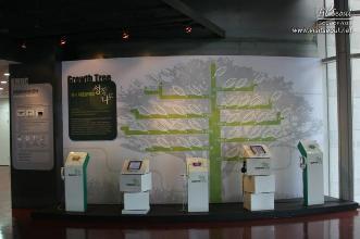 permanent exhibition 4